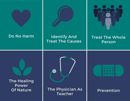 SixPrinciplesNaturopathicMedicine